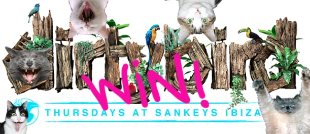win sankeys